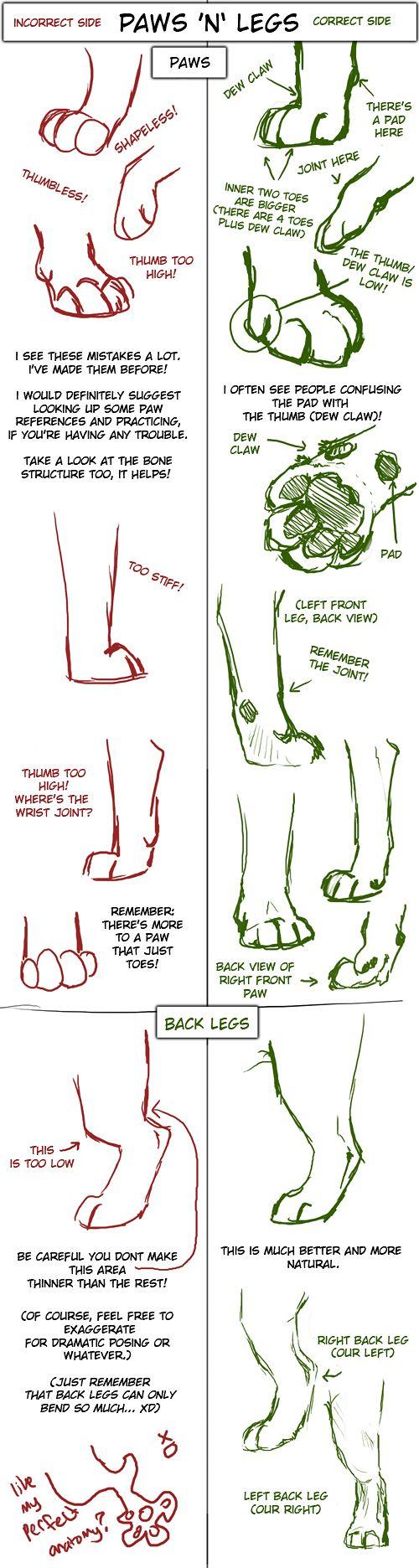 Big Cat Paw and Leg Tutorial by TamberElla.deviantart.com on @deviantART