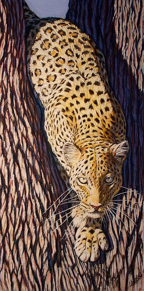Leopard Wall Decor 48 best wall decor images on pinterest | wall decor, animal prints