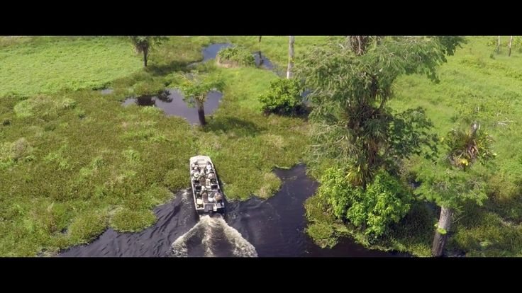 #VR #VRGames #Drone #Gaming Luxury Amazon River Cruises in Peru on the Aria Amazon : Drone Video 5-star cruises, amazon animals, Amazon cruises, amazon luxury cruises, amazon river, amazon river cruises, amazon wildlife, aqua expeditions, aria amazon, Drone Videos, luxury cruise, luxury cruises, luxury river cruises, nature cruises, pacaya samiria, peru cruise, river cruises, sustainable travel, wildlife cruises #5-StarCruises #AmazonAnimals #AmazonCruises #AmazonLuxuryCrui