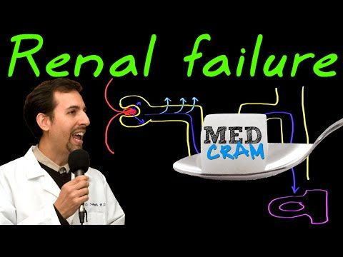 Acute Renal Failure Explained Clearly - YouTube