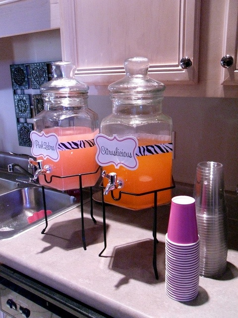 25 Best Ideas About Drink Containers On Pinterest