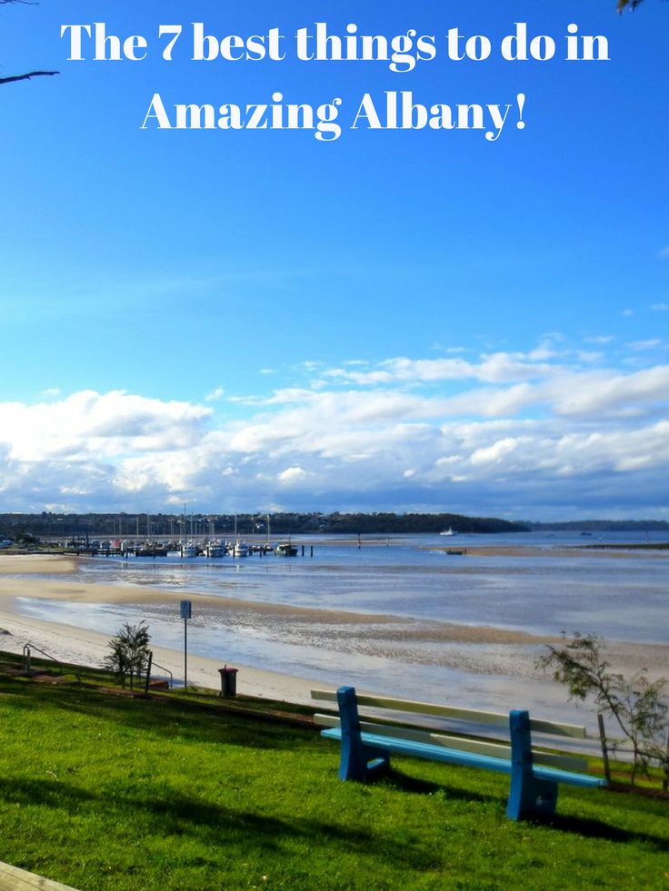 The 7 best things to do in Amazing Albany!