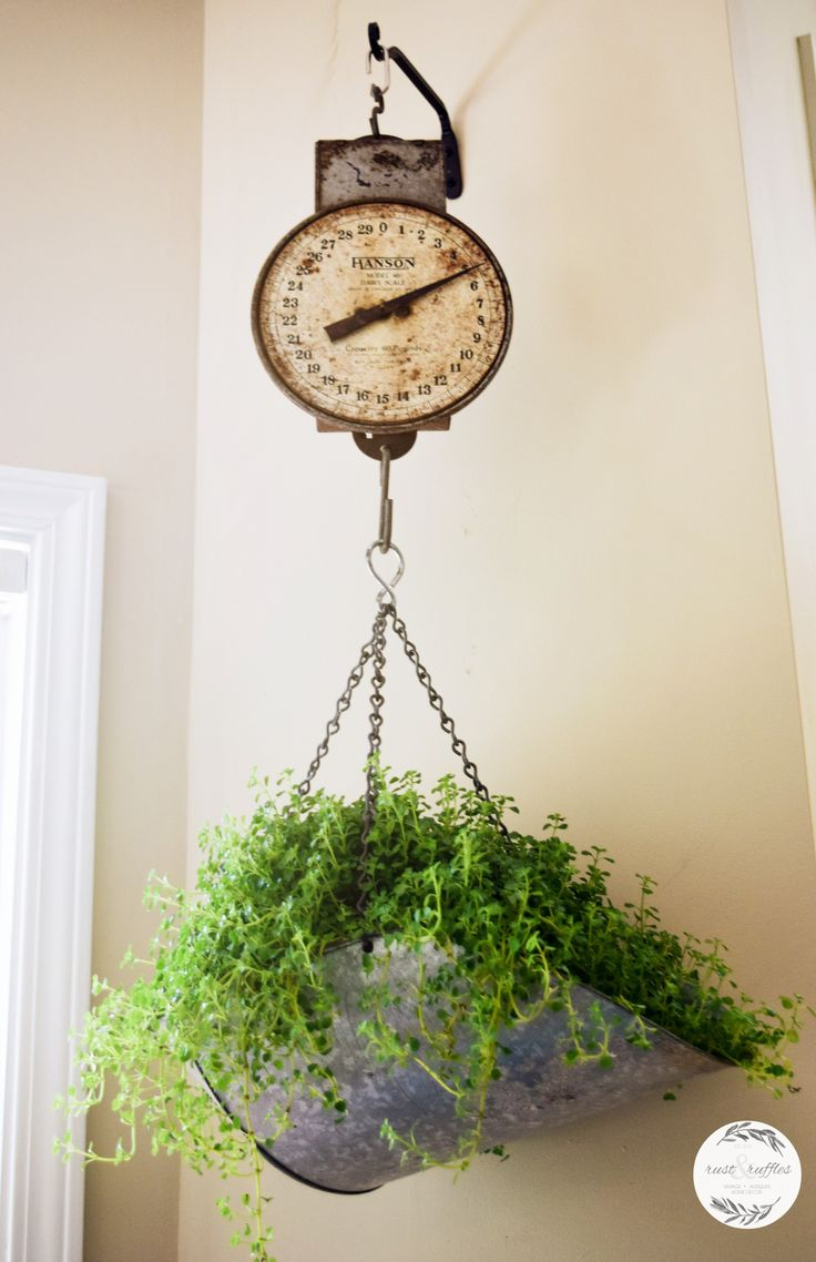 Plant container hanging basket using antique scale