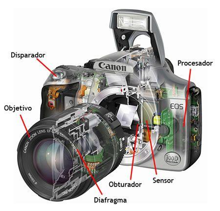 tipos de fotografia digital - Buscar con Google