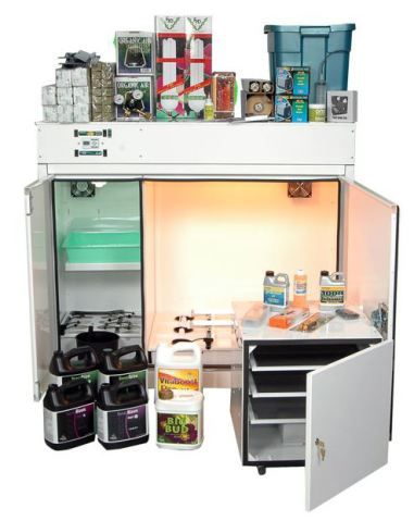 grow-box-all-in