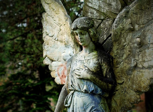 best angels angelitos images angel statues a stone angel in the ross bay cemetary 0235hdr by chaffneue via flickr