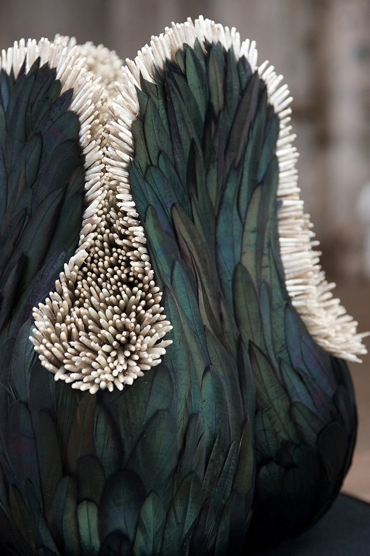 New Feather Sculptures by Kate MccGwire sculpture multiples feathers birds: