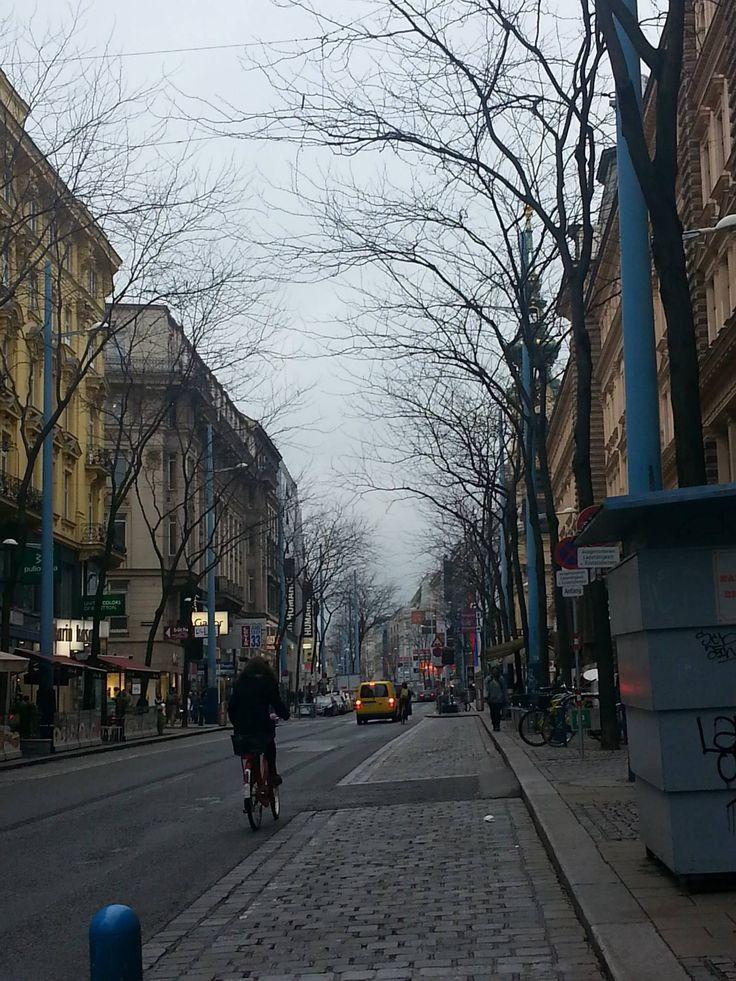 A street in Vienna, taken in November, 2014.