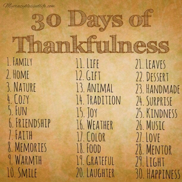 I know it's a day late but I'm posting this 30 Days of Thankfulness Challenge that I'm doing with my small group of teen girls I meet with each week for bible study. I am challenging them to use th...