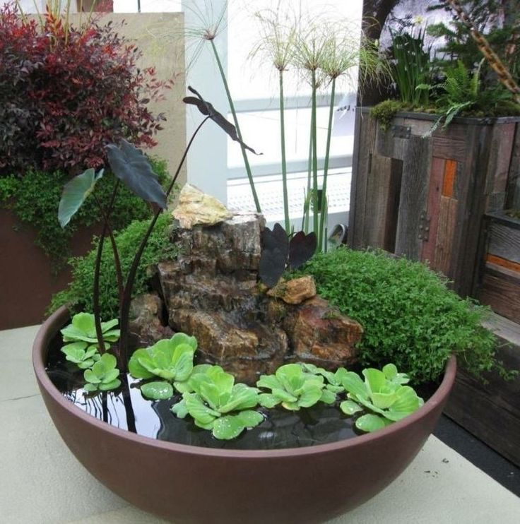 13 best My Patio Pond Project!! images on Pinterest Water - steingarten anlegen mit vlies