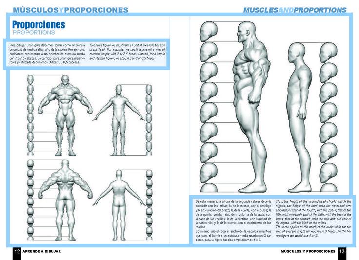 95 best referencias images on Pinterest | Anatomía, Referencia de ...