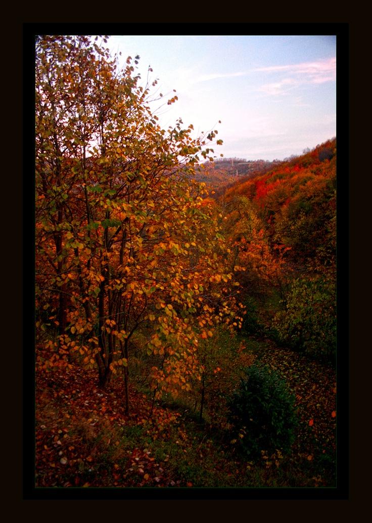 Autumn in Istanbul-Kulindağ