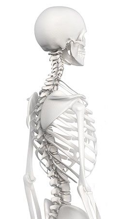 Este vídeo muestra un ejercicio deflexibilización de la columna dorsal, por lo que es un útil ejercicio para combatir patologías como laenfermedad deSchehurmannohipercifosisdorsal, conocida coloquialmente como joroba.
