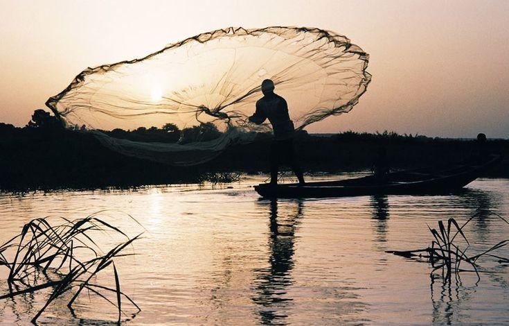 Lancer de filet sur le fleuve Niger, Niamey,Niger