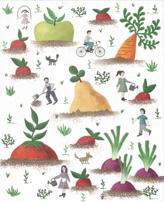 Vegetable garden by Daniela William