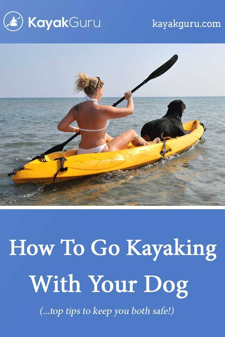 How To Go Kayaking With Your Dog Dog Accessories Tips Advice