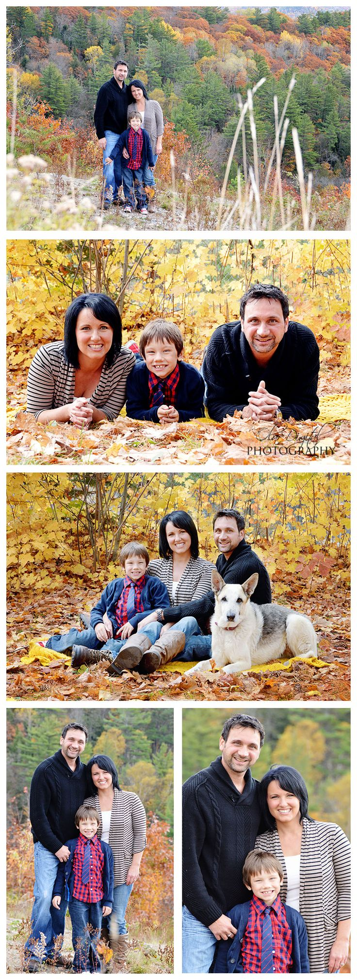 Family poses - one kid Family poses with dog