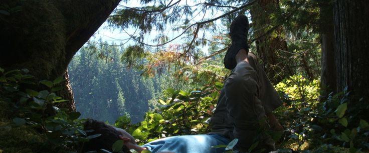 Hiding in the trees enjoying another Dam Good Day. #exploreBC #exploreCanada
