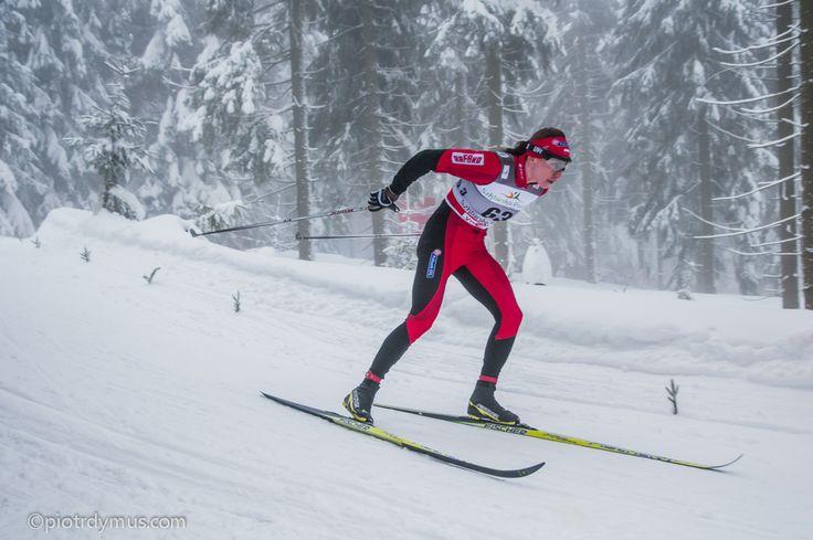 Justyna Kowalczyk, Cross-Country Cup Jakuszyce 2012.
