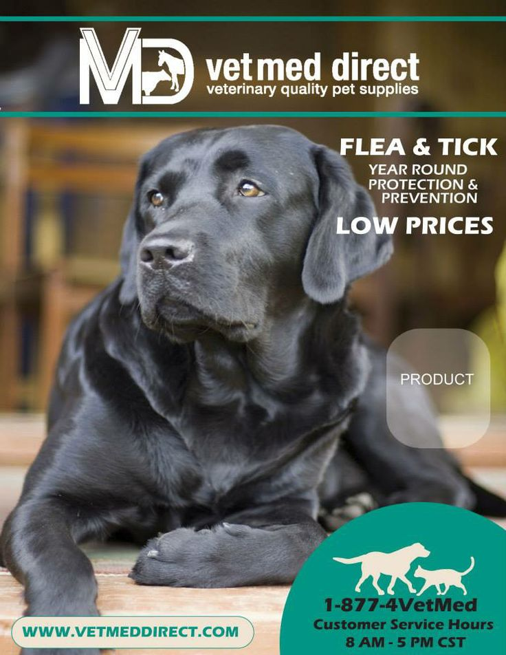 Catalog cover for Vet Med Direct.