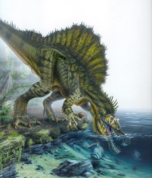I love the colors in this. Plus..what a beautiful fellow, Spinosaurus.