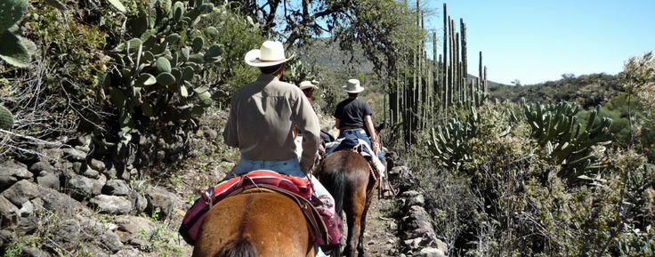 Rancho Las Cascadas (Mexico City, Mexico (With Images