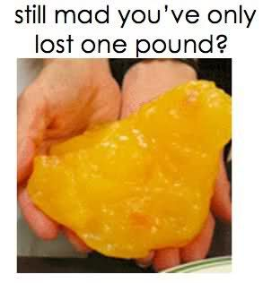 Mad you've only lost one pound? Photo puts it in perspective - 3 Fat Chicks on a Diet Weight Loss Community 100 lb. Club