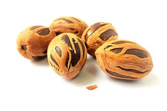 Nutmeg Health Benefits with Recipe https://www.onecaremagazine.com/nutmeg-health-benefits-recipe/