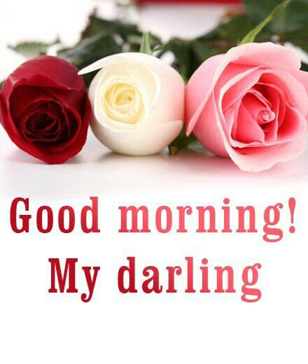 Good Morning My Love Romantic : Ideas to try about good morning darling image
