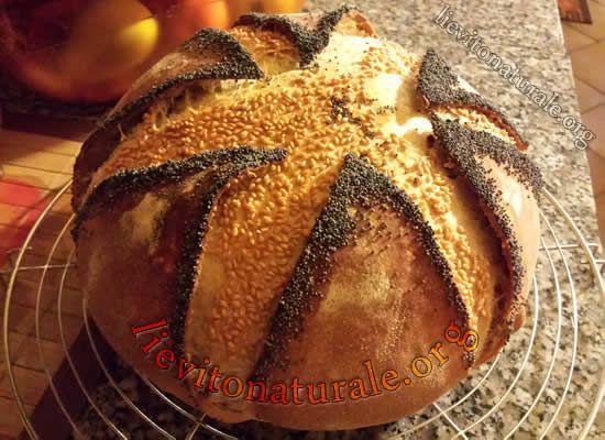 Pane con fodera a 6 punte orlate di semi di papavero