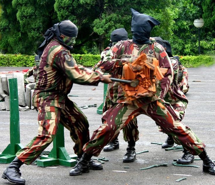 Kopassus - Indonesia Army Special Force martial art demonstration
