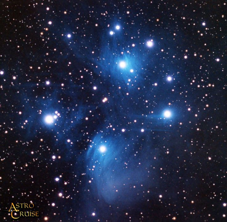 The cluster of stars known as the Pleiades or Seven Sisters have moved on compared to the Orion Nebula, and have blown away most of the surrounding cloud of gas and dust to be revealed as blue-white young stars.