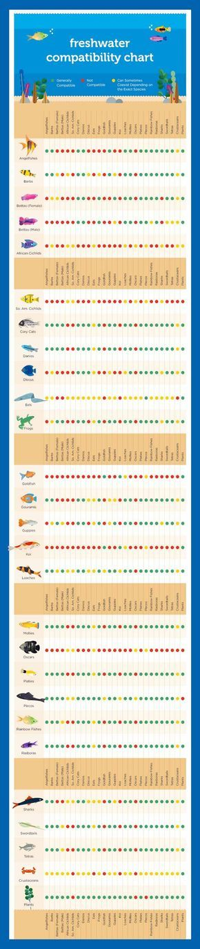 The  Best Compatibility Chart Ideas On   Freshwater