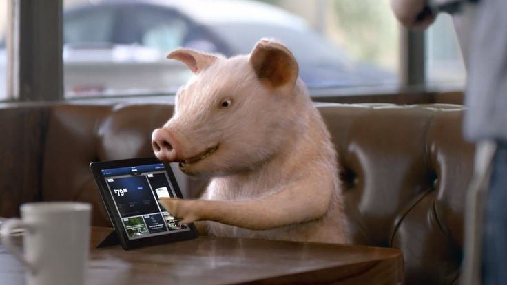GEICO Commercial  Pig Latin Maxwell Pig  OLD COMMERCIALS