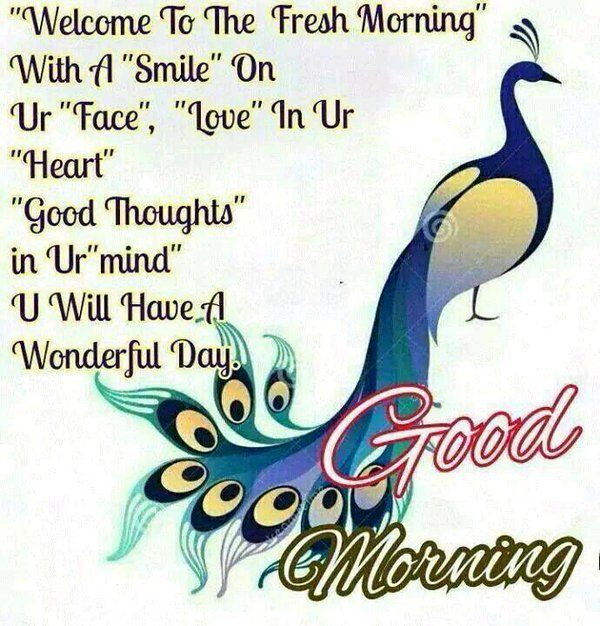 Good Morning Beautiful In Polish : Best gd mrng noon evng nght images on pinterest