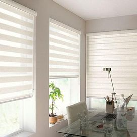 Whole Home®/MD 'Sheer View' Roller Shade With Valance