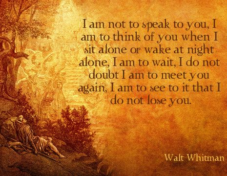 I am not to speak to you, I am to think of you when I sit alone or wake at night alone, I am to wait...