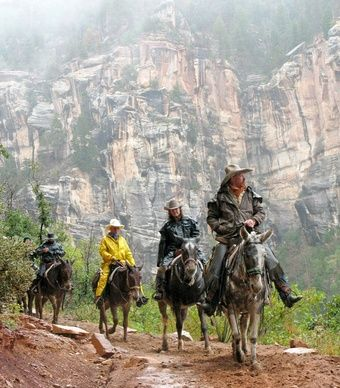 A horseback ride through the Grand Canyon. (Courtesy Grand Canyon NPS/Flickr) From: The Grand Canyon, 3 Ways.