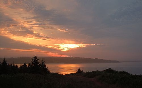 Sunrise over Lawrencetown, Nova Scotia. There are also photos of lupins on this website and lots of other great photos of Nova Scotia flora, fauna and landscapes.