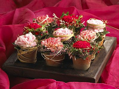 Imaginative arrangements with roses - Symmetrical three different rose varieties were arranged in small terracotta pots. The arrangements with the rustic wooden tray decorated with raffia, Ivy and gypsofilia seeds are in harmony. (Photo: Flower Council of Holland) - Wohnen & Garten