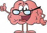 hoogbegaafden lesmateriaal: menselijk lichaam, het oerwoud, het brein, spijsvertering, ...