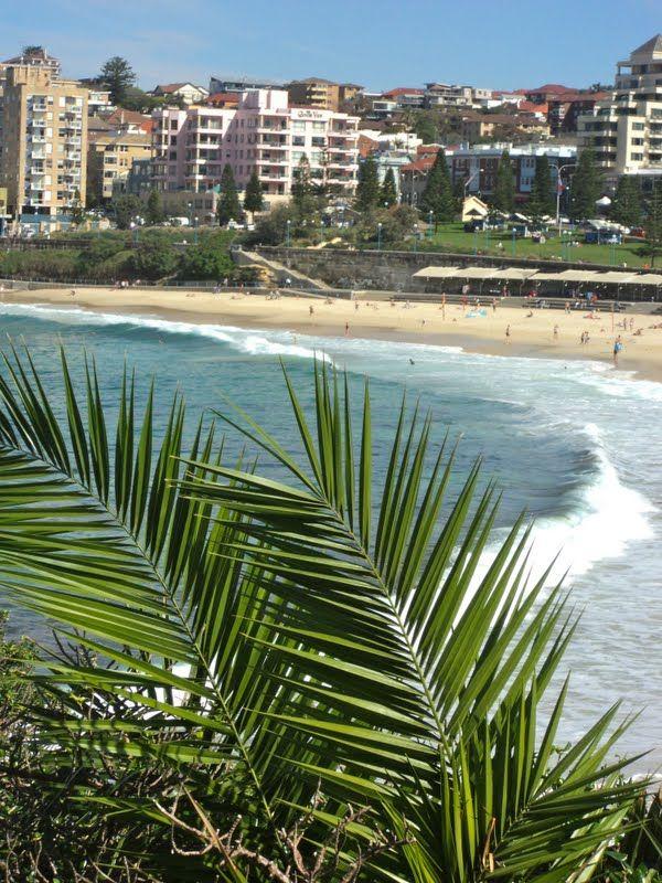 coogee beach sydney australia. take me back please!