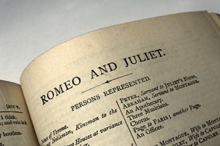 why william shakespeares romeo and juliet is not a perfect romance Chance time fate passion life love in a contemporary and excitingly unconventional interpretation, the perfect poetry of william shakespeare's romeo and juliet reveals the magnificent romance and ultimate tragedy of star- crossed love.