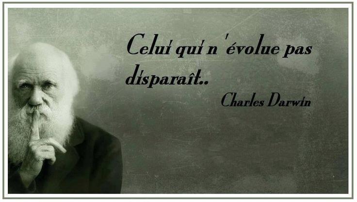 Celui qui n'évolue pas...