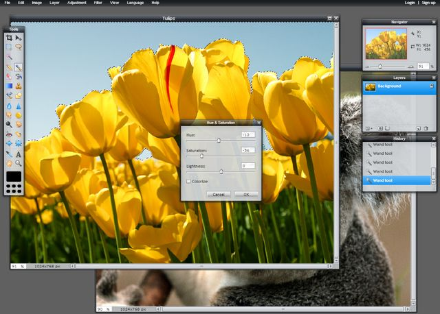 Pixlr: The Best Free Online Image Editor