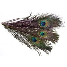 Dyed Big Peacock Eyes Fly Tying Feathers Find beautiful fly tying feathers! Check out our offers!