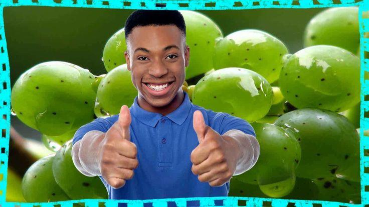Para Que Sirven Las Uvas Verdes  Para Que Se Utiliza La Uva https://www.youtube.com/watch?v=IXBWuKMgGFo para que sirven las uvas verdes - para que sirven las uvas verdes - beneficios y propiedades de la uva. Este zumo posee un sabor muy bueno y es bastante saludable como nutritivo además es: Para que sirve el jugo de manzana y jengibre  Un gran aportador de energía Propiedades de la manzana para la salud Ya no es un imposible con el jugo de uva para adelgazar en muy poco tiempo veras que es…