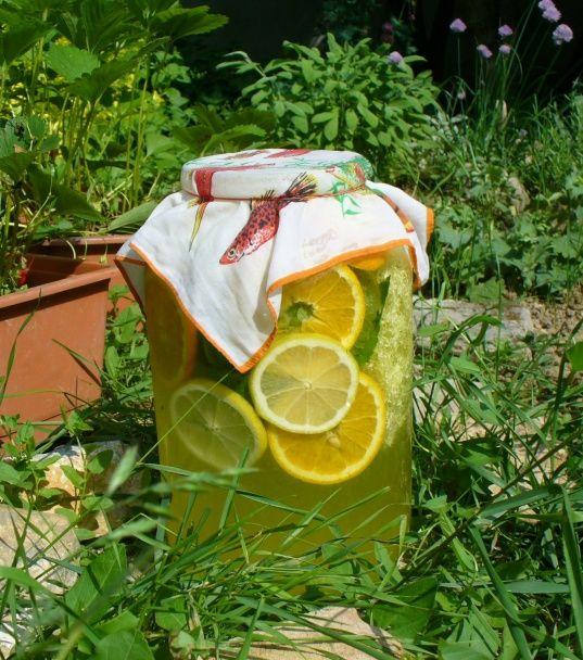 Fantastická bazová limonáda alebo Ako chutí vôňa (fotorecept) - obrázok 8
