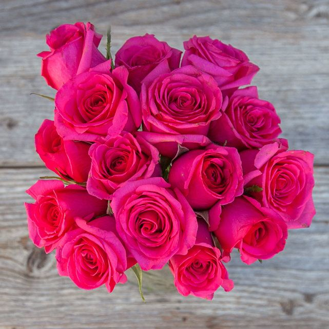 Comfortable 37 Valentine Roses Wallpapers Photo Ideas Pictures ...