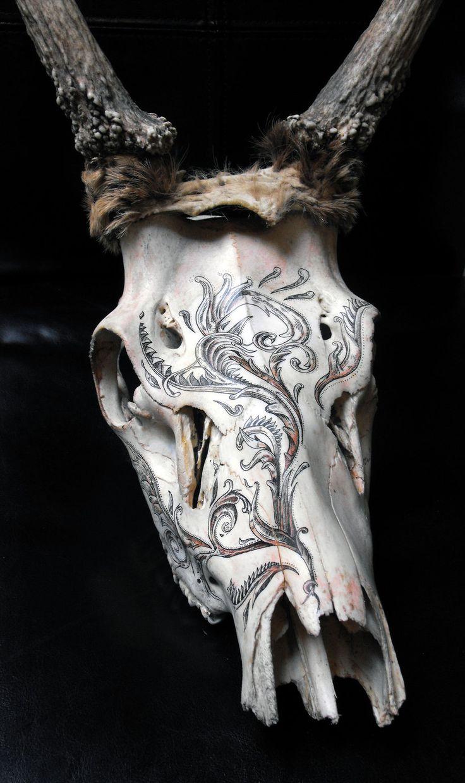 172 Best Antler Deer Art Images On Pinterest Deer Skulls